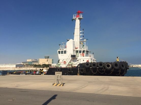 Twin Screw Tug, 50 TBP, 36m, 2004,Ref C3819